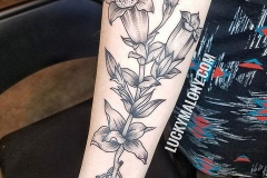 botanical tattoo by Lucky Malony