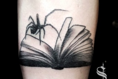 victoria-varty-swamp-witch-blackwork-spider-book
